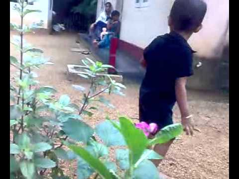 Aanchal Mein Phool Lyrics - Asha Bhosle