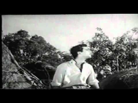 Aao Badal Chain Se Royen Lyrics - Talat Mahmood