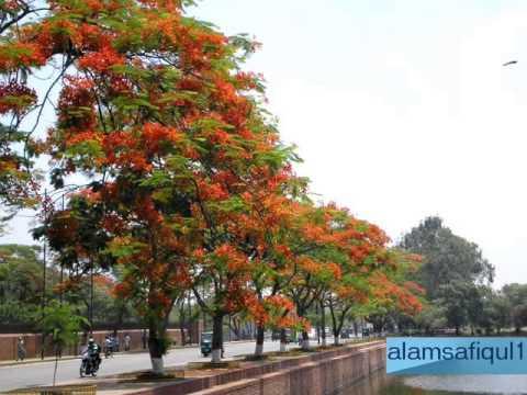 Ek Tum Ho Jise Ham Lyrics - Anuradha Paudwal