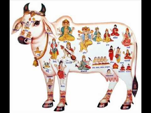 Gaiya Lakho Ki Hai Maiya Lyrics - Asha Bhosle