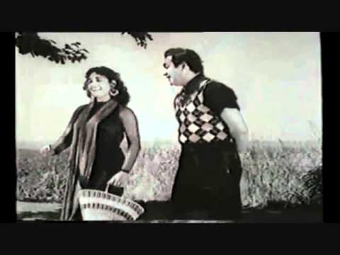 Humein Haal-E-Dil Tumse Kehna Hai Lyrics - Asha Bhosle, Talat Mahmood