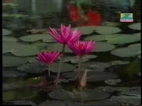 Kuchh Bhooli Huyi Yaadein Lyrics - Kishore Kumar