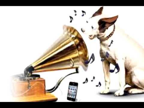 Na Ye Chaand Hoga Na Lyrics - Asha Bhosle