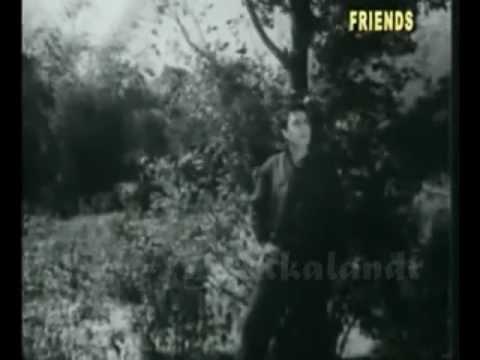 Teri Ankhon Ka Rang Nirala Hai Lyrics - Lata Mangeshkar, Mohammed Rafi