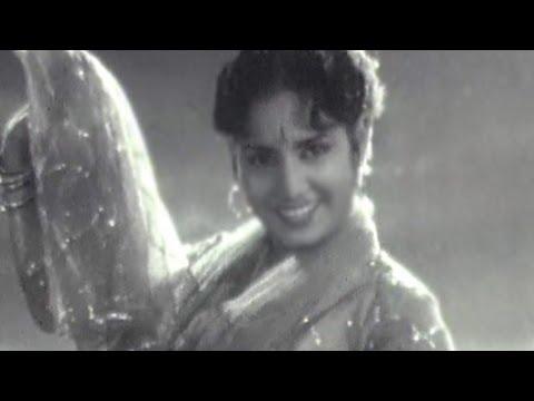 Tum Mard Nikaloge Lyrics - Mohammed Rafi, Suman Kalyanpur