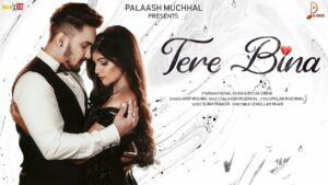 Tere Bina Lyrics - Amit Mishra