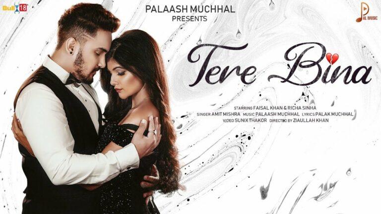 Tere Bina Lyrics - Amit Mishra