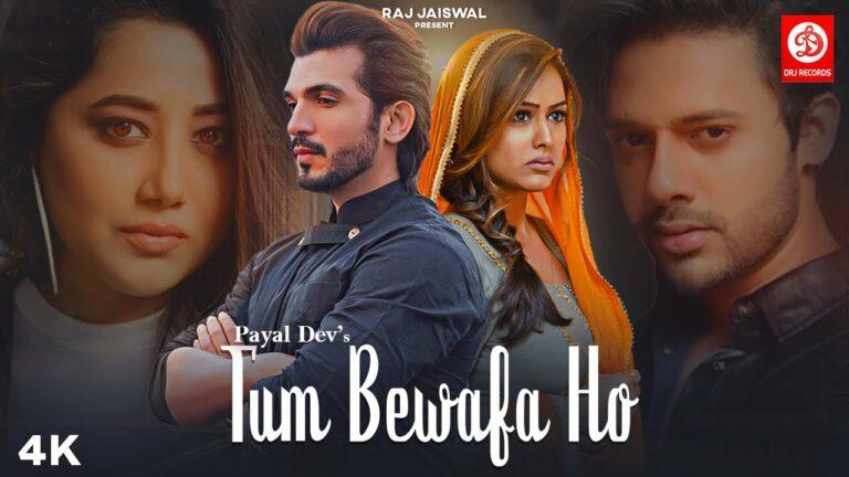Tum Bewafa Ho Lyrics - Payal Dev, Stebin Ben